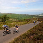 The Exmoor Beast related article
