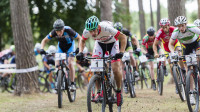 Killeen and Crumpton win at Cannock Chase in final round of 2015 British Cycling MTB Cross-country Series