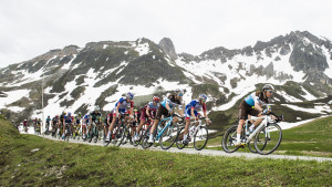 Lessons from the cycling professionals