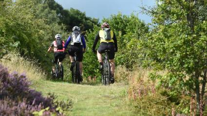 Mountain Bike Leadership research indications
