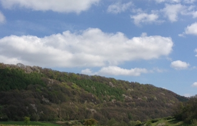 The heavily forested hills of Monmouthshire